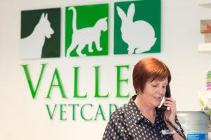 Pet Health Care Plans